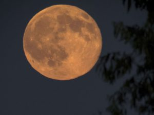 A full moon glitters during the shortest night of the year near Nagykanizsa, 208 kms southwest of Budapest, Hungary, late Monday, June 20, 2016. (Szilard Gergely/MTI via AP)/MTI202/16173288698046/1606211028